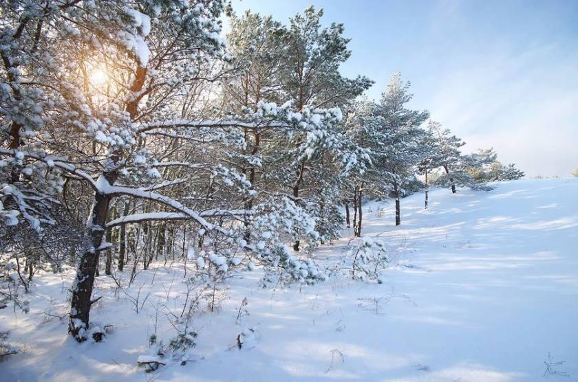 Snow scene for TT